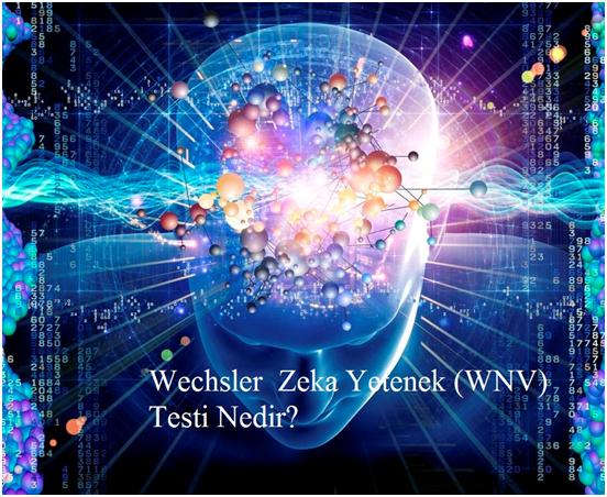 wnv Testi