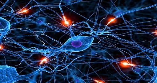 nöron-snapstik bağlantılar